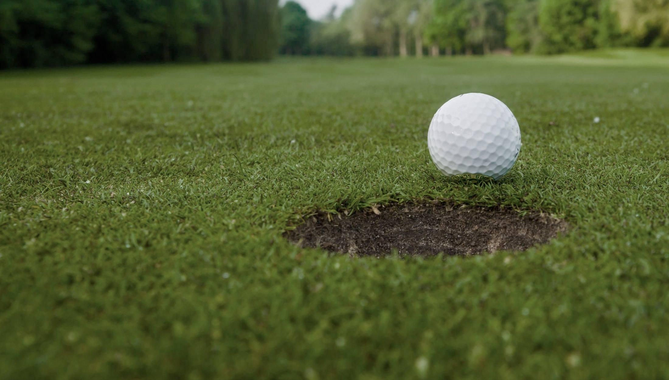 Golfbold green
