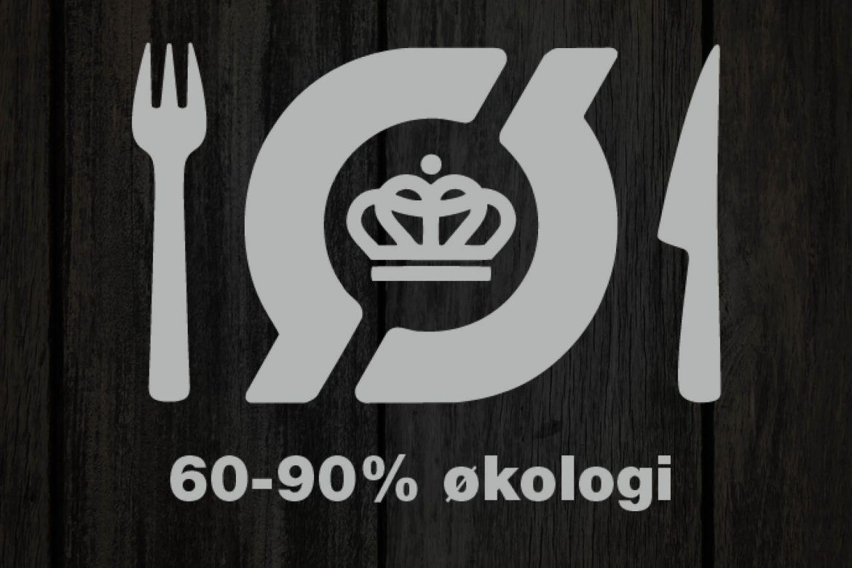 Instagram_soelv_logo